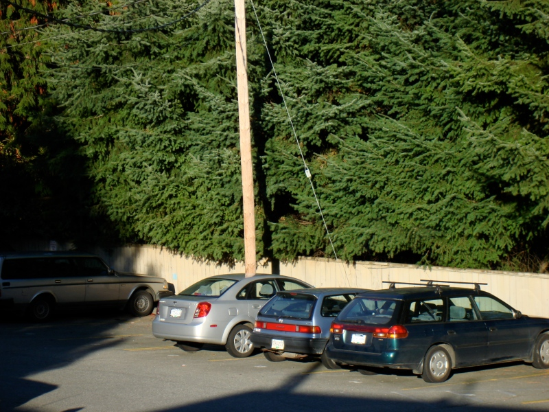 Pole Through Car Illusion. Vancouver, Canada