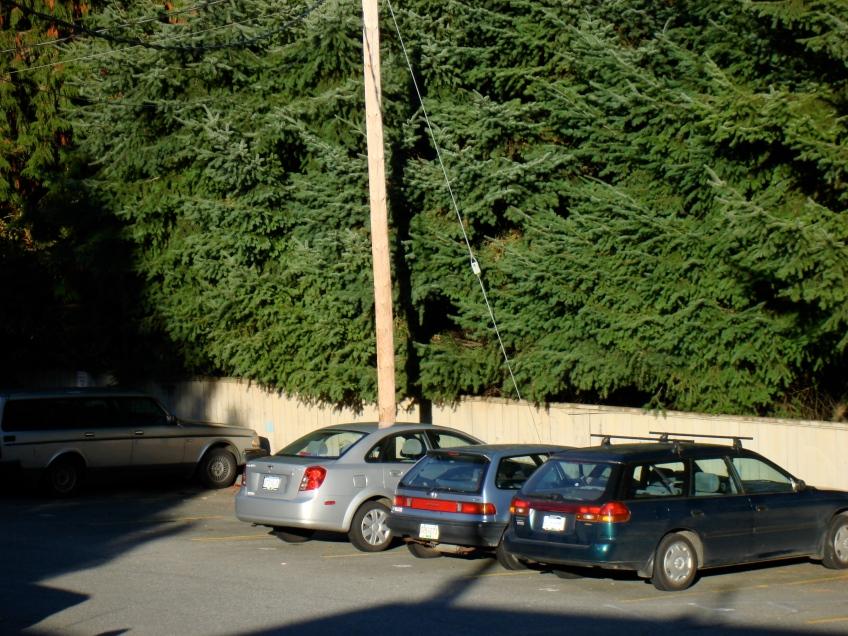 Pole Through Car Illusion. Vancouver, Canada