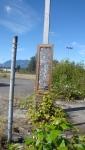 Roadside Framed Art. Vancouver, Canada