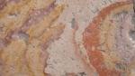 Ancient Paving Stones - San Miguel De Allende, Mexico