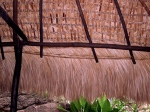 Thatched Shade Roofing 1. Oaxaca Coast, Mexico