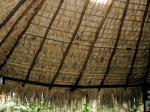 Thatched Shade Roofing 2. Oaxaca Coast, Mexico