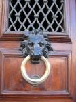 Lion Knocker under lattice - Florence