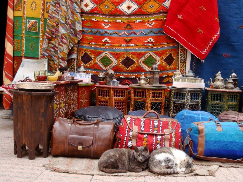 Bag Store with Cats. Essaouira