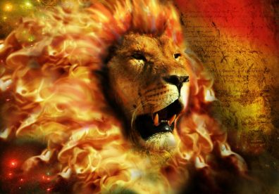 fire_lion_by_alex_barrera