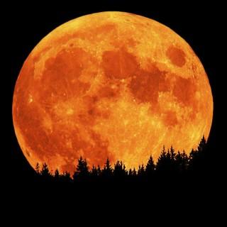 full_moon_dreams