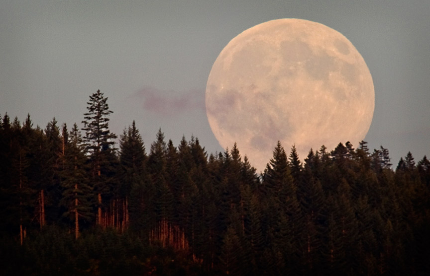 Harvest-Moon-Image-Courtesy-of